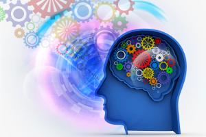 mind mechanisms