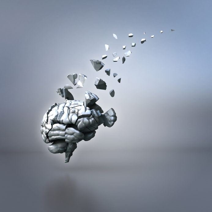 brain pieces
