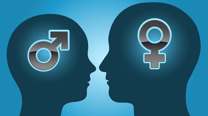 male-and-female-brains